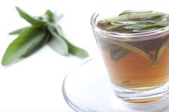 Tè prudente con il mazzo di salvia su fondo bianco Fotografia Stock Libera da Diritti