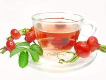 Tè rosso con le bacche selvatiche del cinorrodonte Fotografia Stock