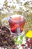 Tè rosso in vetro Immagine Stock