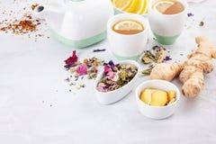 Tè sano della frutta e di erbe fotografia stock