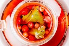 Tè sano della frutta in un vaso di vetro Immagine Stock Libera da Diritti