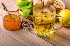 tè selettivo naturopathy di infusione di erbe di vetro del horsetail del fuoco del equisetum della tazza del arvense Fotografie Stock Libere da Diritti