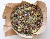 tè selettivo naturopathy di infusione di erbe di vetro del horsetail del fuoco del equisetum della tazza del arvense Fotografia Stock Libera da Diritti
