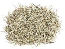 Tè - tè bianco Fotografie Stock Libere da Diritti