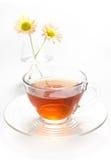 Tè in tazza con il crisantemo Fotografia Stock Libera da Diritti