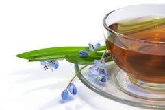 Tè in tazza trasparente e fiori Immagini Stock Libere da Diritti
