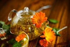 Tè terapeutico dai fiori della calendula fotografia stock libera da diritti