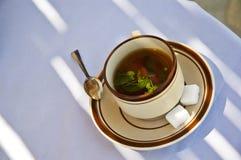 Tè tunisino Fotografia Stock