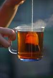 Tè in un sacchetto Immagini Stock