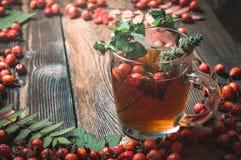 Tè in una tazza trasparente Fotografia Stock
