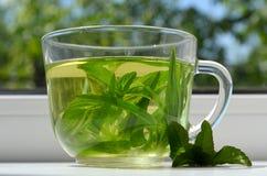 Tè verde immagini stock libere da diritti