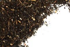 Tè verde asciutto Immagine Stock Libera da Diritti
