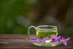 Tè verde in bella tazza Immagini Stock Libere da Diritti