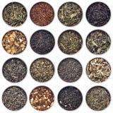 Tè verde, bianco, nero e di erbe Immagini Stock Libere da Diritti