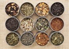 Tè verde, bianco, nero e di erbe Fotografia Stock