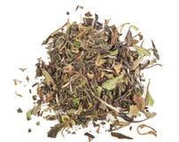 Tè verde cinese Immagini Stock Libere da Diritti