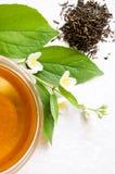 Tè verde con il gelsomino Fotografia Stock