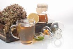 Tè verde con il piccoli vaso e tazze Immagine Stock Libera da Diritti