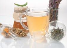 Tè verde con il piccoli vaso e tazze Fotografia Stock