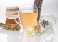 Tè verde con il piccoli vaso e tazze Immagine Stock