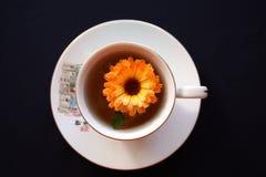 Tè verde con un fiore luminoso Fotografia Stock