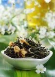 Tè verde del gelsomino Fotografie Stock Libere da Diritti