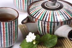 Tè verde del gelsomino, fiore del gelsomino Fotografia Stock
