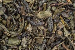 Tè verde della foglia di struttura Fotografia Stock Libera da Diritti