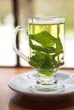 Tè verde della menta Fotografia Stock Libera da Diritti