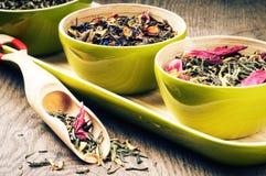 Tè verde di Fflower fotografia stock libera da diritti