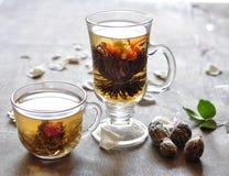 Tè verde e nero Immagine Stock