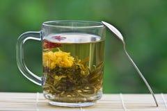 Tè verde esotico in una tazza di vetro Immagine Stock Libera da Diritti