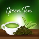Tè verde, foglia di tè verde Illustrazione Vettoriale