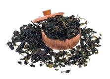 Tè verde organico del gelso di erbe su fondo bianco Fotografia Stock Libera da Diritti