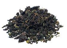 Tè verde organico del gelso di erbe su fondo bianco Fotografie Stock