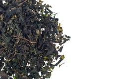 Tè verde organico del gelso di erbe su fondo bianco Immagini Stock Libere da Diritti