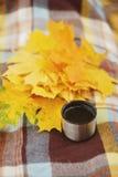 Té afuera en parque amarillo del otoño Foto de archivo