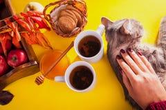 Té caliente con las manzanas y la miel en una bandeja Autumn Harvest Fotos de archivo libres de regalías