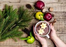 Té caliente de la Navidad con la taza del fondo de Apple Berry Cinnamon Wooden de ramas calientes Horiz del abeto de las frutas d Fotografía de archivo