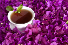 Té chino rodeado por las flores imagen de archivo