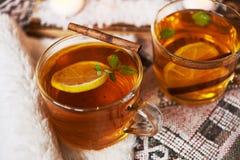 Té con el limón y la menta Foto de archivo libre de regalías