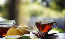 Té con el limón y la menta en naturaleza Una taza de té caliente de la menta con el le fotografía de archivo libre de regalías