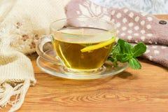 Té con el limón y la menta por otra parte de las manoplas de lana, bufanda Foto de archivo libre de regalías