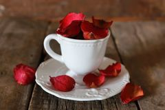 Té con el pétalo color de rosa y el azúcar Foto de archivo libre de regalías