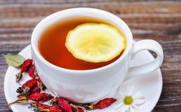 Té con los escaramujos y el limón Foto de archivo