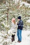 Té de consumición del hombre y de la mujer en bosque nevoso Imagen de archivo libre de regalías