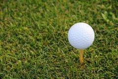 Té de golf photo libre de droits