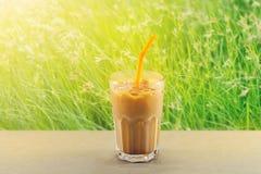 Té de hielo con leche en vidrio en fondo vibrante de la naturaleza de la hierba Foto de archivo libre de regalías