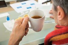 Té de Holding Cup Of del hombre de negocios Fotografía de archivo libre de regalías