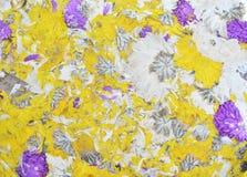 Té de la flor del crisantemo Imágenes de archivo libres de regalías